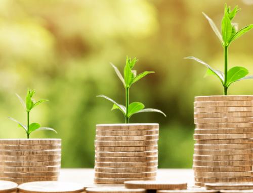 Qu'est-ce que la taxonomie de la finance durable de l'UE? Un guide pour les entreprises